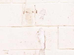 5 5 - 外壁塗装の注意点 塗装で我が家をリフレッシュ