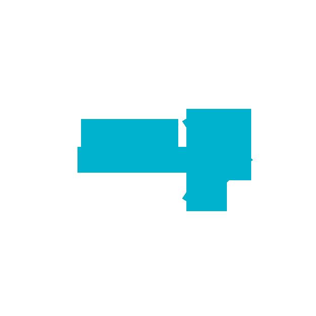 4 4 - RINO siteの特徴