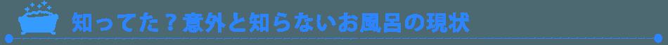 5 1 - 風呂釜洗浄